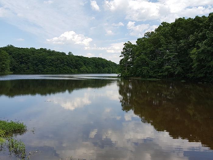 6-17 Lake_MOCMosaic.jpg