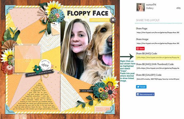 600Screenshot_2019-05-03-Floppy-Face-copy.jpg