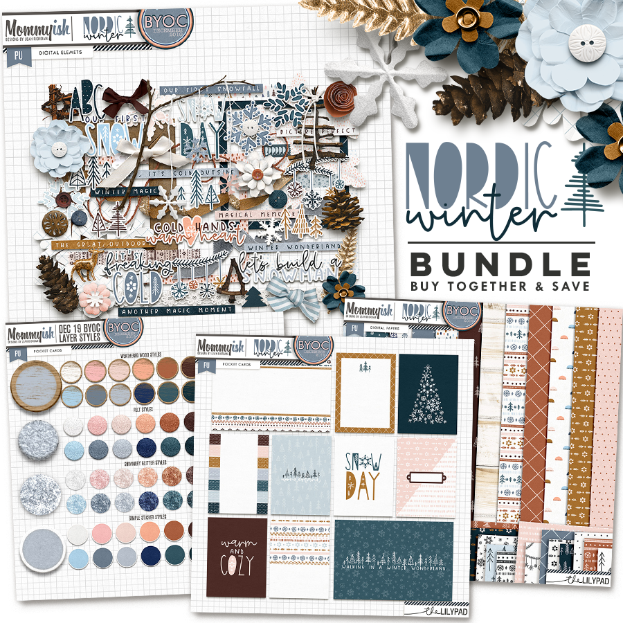 bundle-949.png