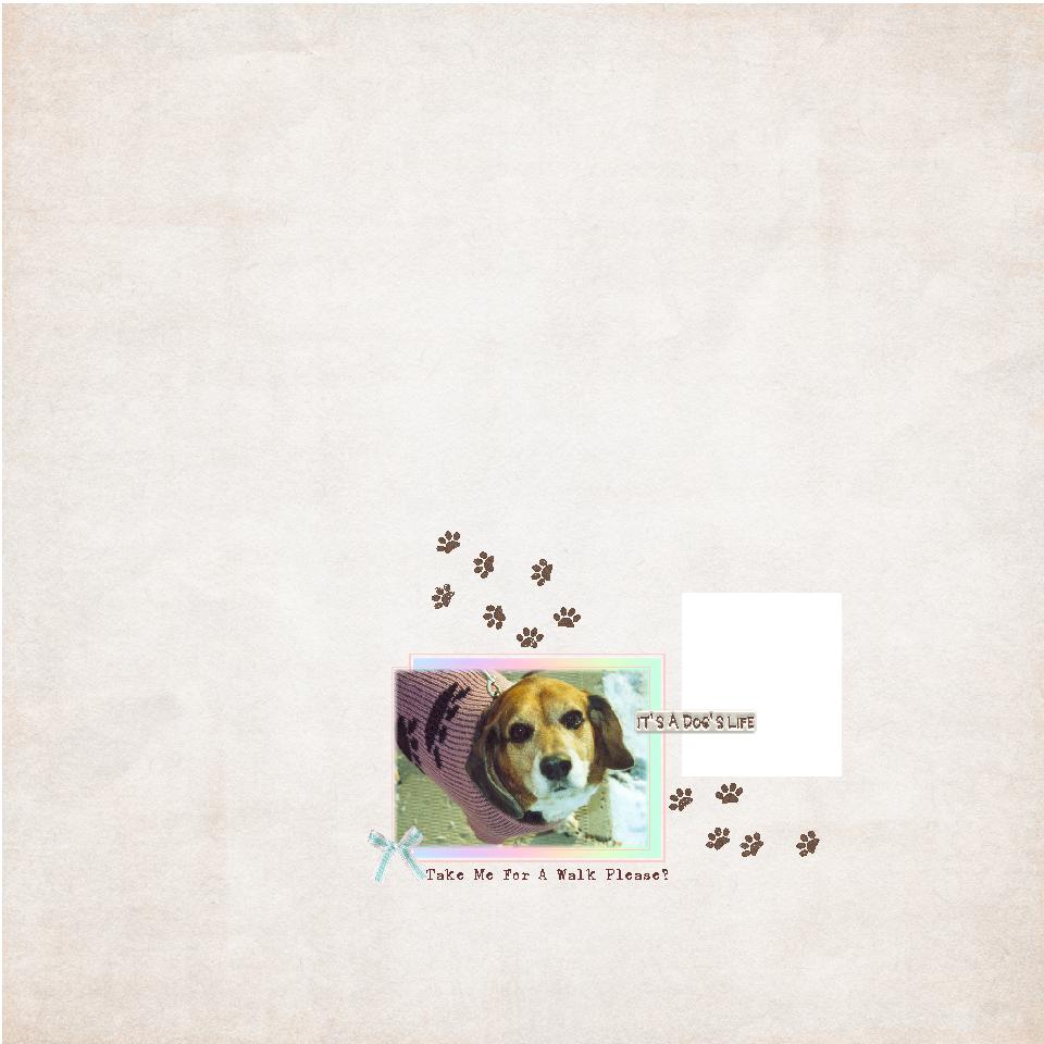 Dog Life.png
