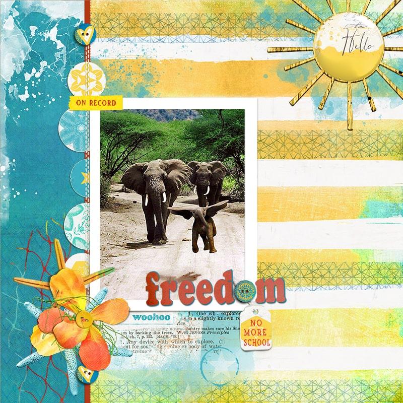 Freedom_lgrieveson_challenge_tp_june.jpg