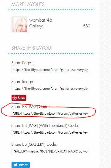 gallery code.JPG