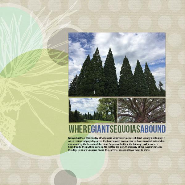 Giant Sequoias web.jpg