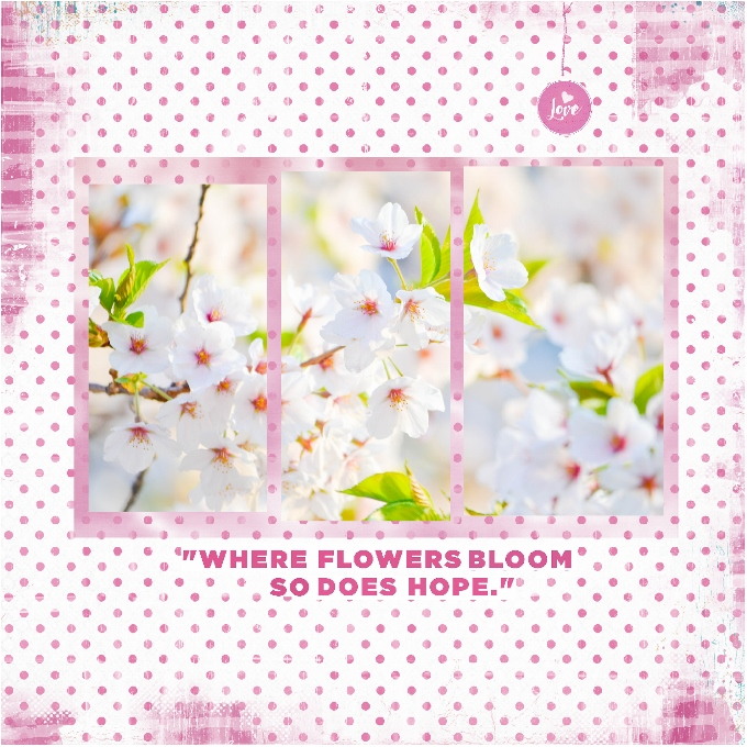 Hope Blooms-Photography Challenge- (680x680).jpg