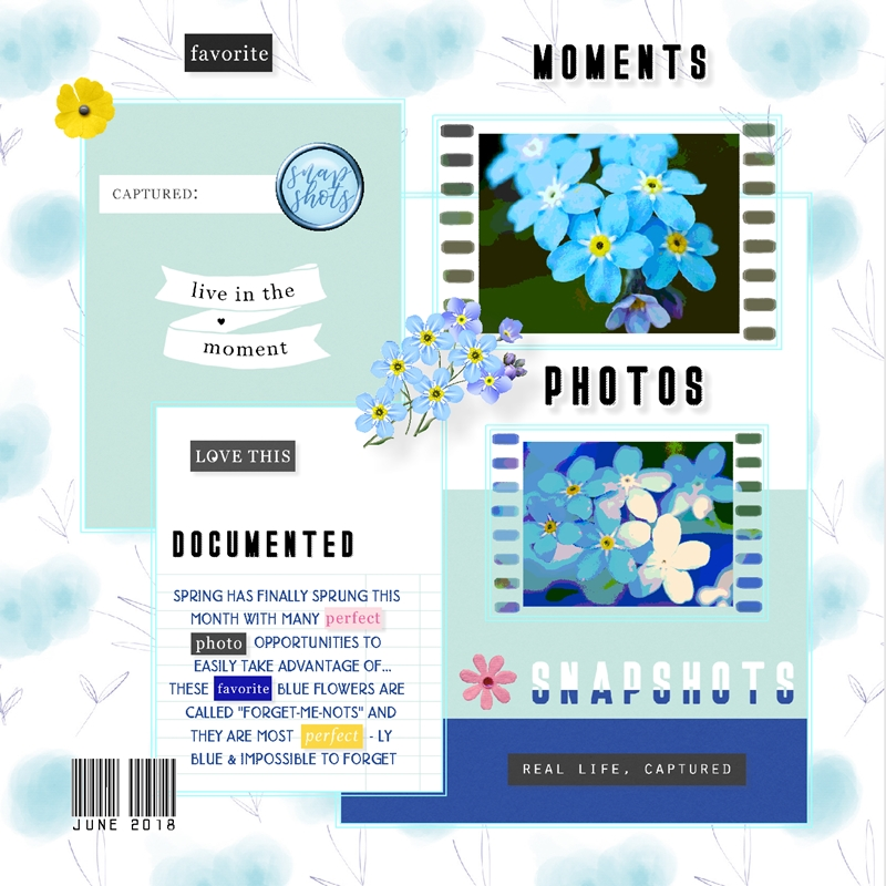 Journaling Challenge-June-Mix WA Elements With Your Journaling 2.jpg