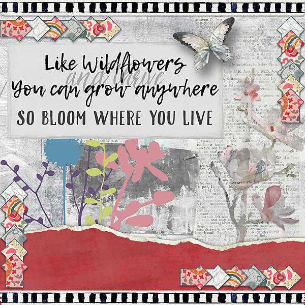 Like-Wildflowers-web.jpg