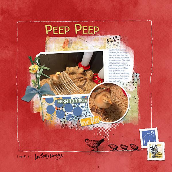 Peep-Peep-web.jpg