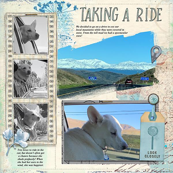 Taking-a-Ride-web.jpg