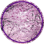 Pups_r_Paps