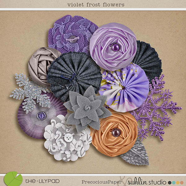 Violet Frost Flowers