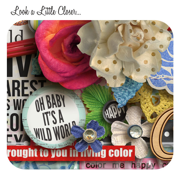 LIVING COLOR | Digital Scrapbooking | ForeverJoy Designs