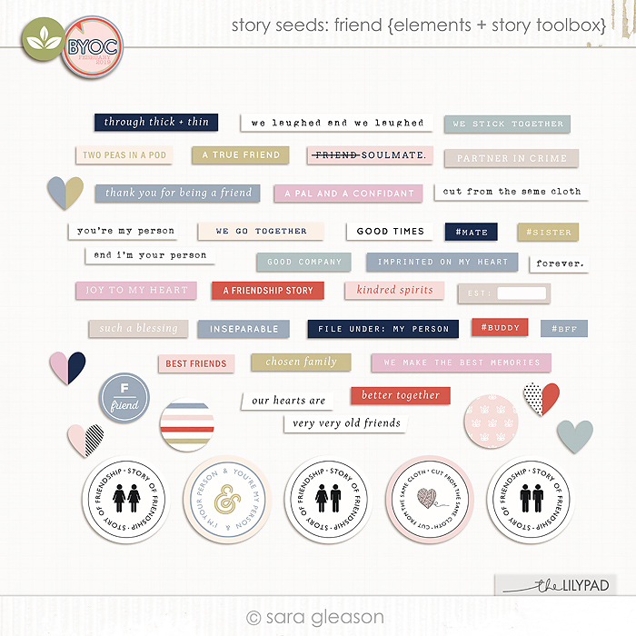 Story Seeds: Friend {elements + story toolbox}