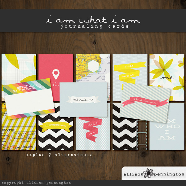 i am what i am: Journaling Cards