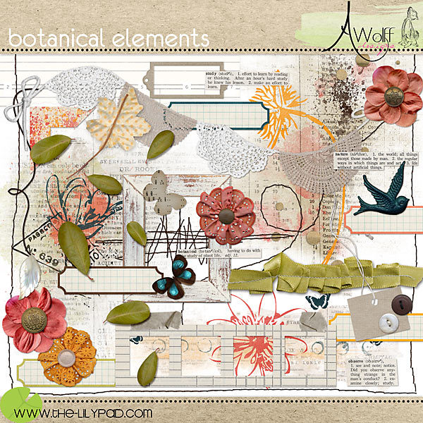 botanical elements