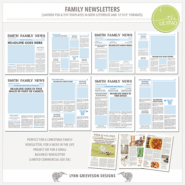 Wonderful Family Newsletter Templates  News Letter Formats