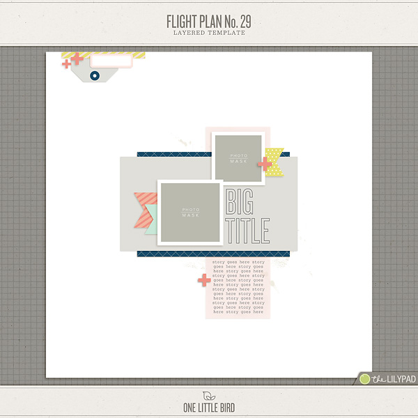 Flight Plan No   Layered Template  One Little Bird