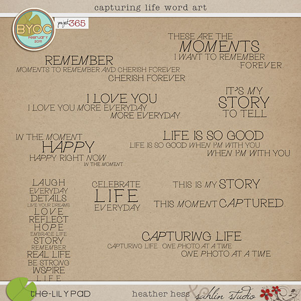 Capturing Life Word Art