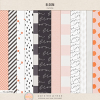 Bloom (papers)