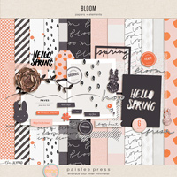 Bloom (papers + elements)