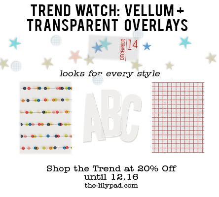 Trend watch- Vellum + Transparent Overlays