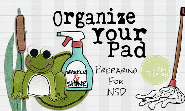 Organize Your Pad: Preparing for iNSD