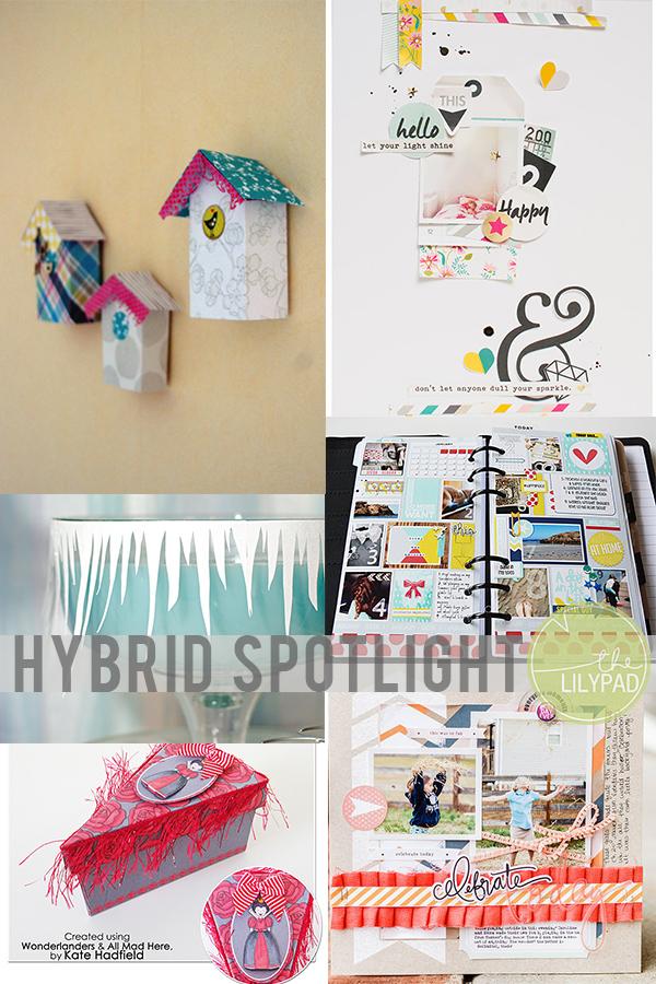 TLP-blog-header hybrid spotlight January