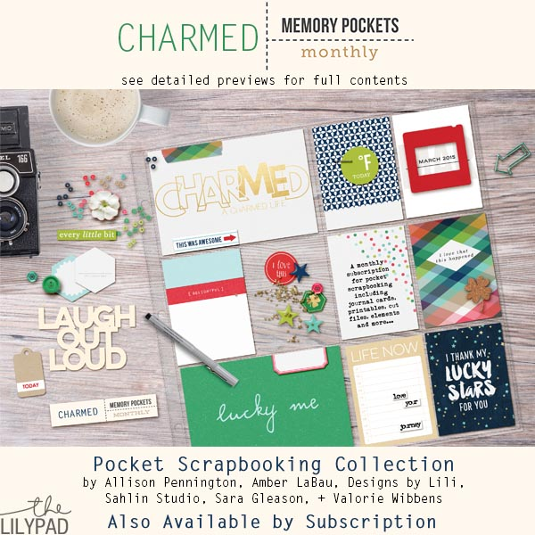 Memory Pockets Monthly March: Charmed!