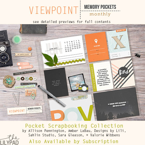 Memory Pockets Monthly June Collection: Viewpoint!