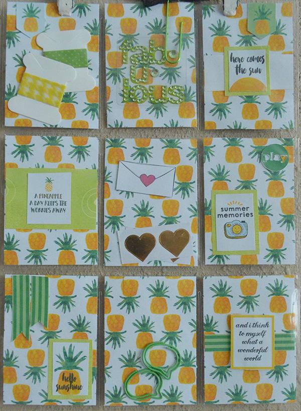 hybrid pocket letter pineapple