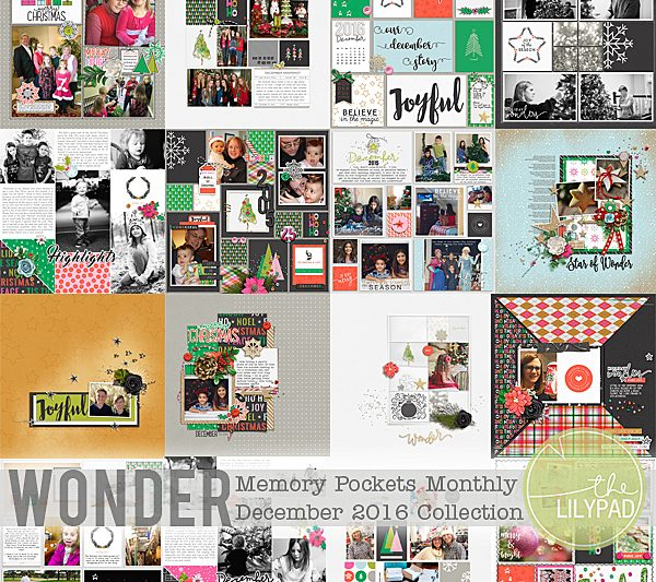 Memory Pockets Monthly December 2016 | Wonder