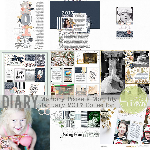 Memory Pockets Monthly January 2017 | Diary