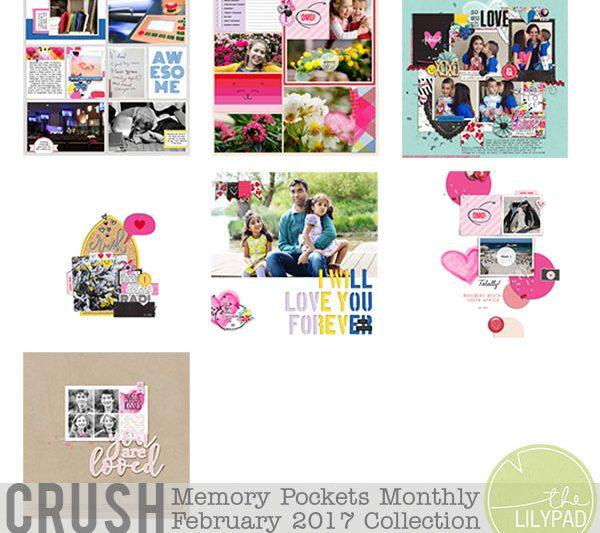 Memory Pockets Monthly February 2017 | Crush