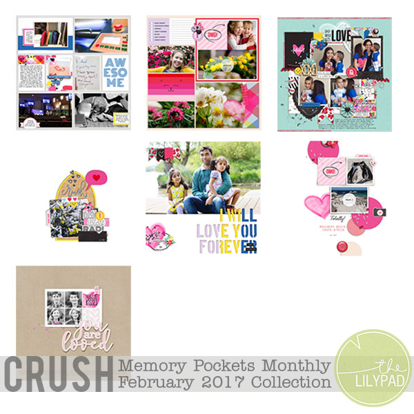 Memory Pockets Monthly February 2017 | Crush