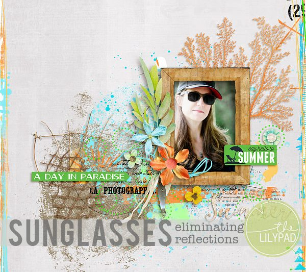 Eliminating Reflections in Sunglasses
