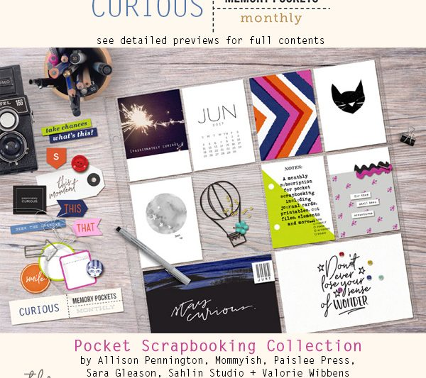 Memory Pockets Monthly: Curious