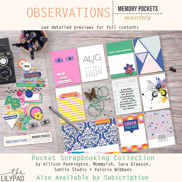 Memory Pockets Monthly : Observations
