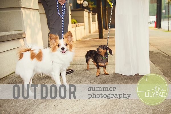 Outdoor Summer Photography