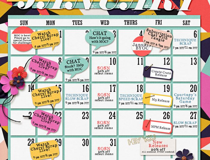 Busy month at TLP!