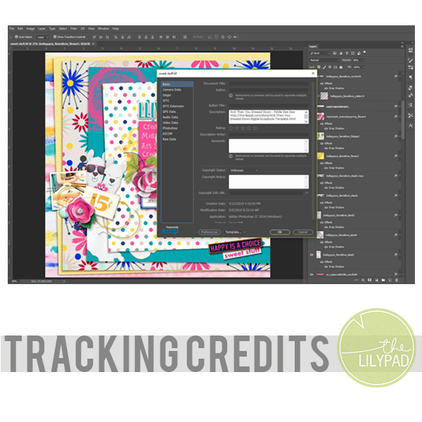 Tracking Credits using File Info