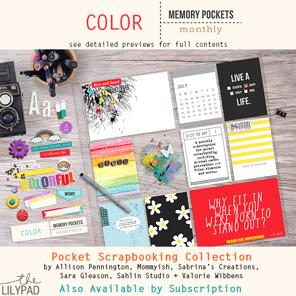 Memory Pockets Monthly: Color
