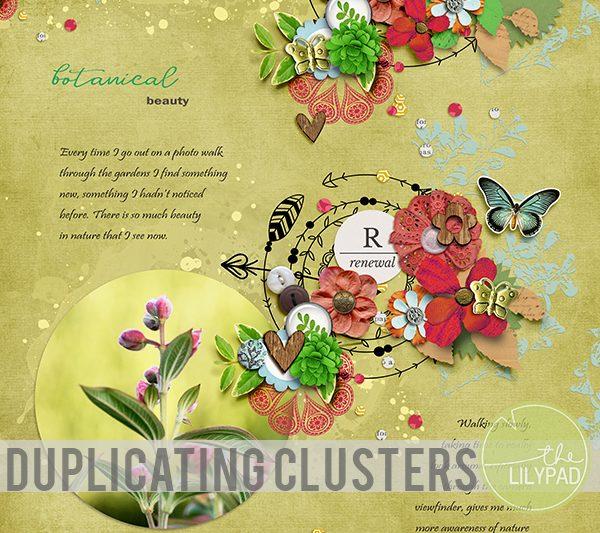 Duplicating Clusters