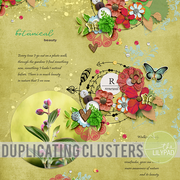 Duplicating Clusters