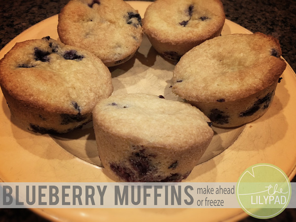 Blueberry Muffins – make ahead or freeze!