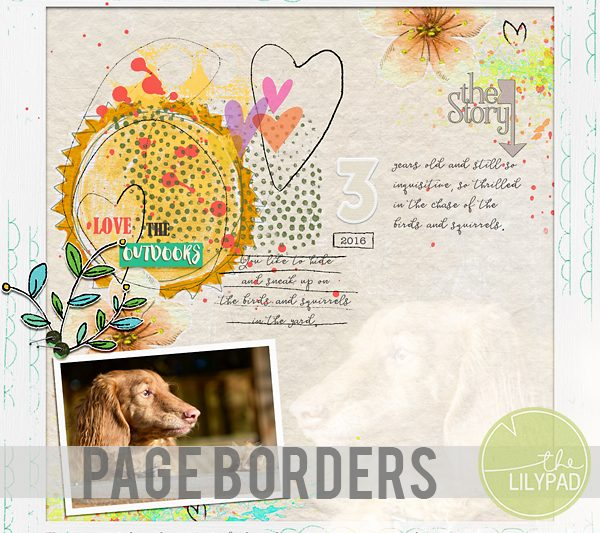 Paper Borders