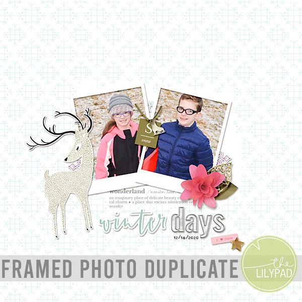 Duplicating a Framed Photo