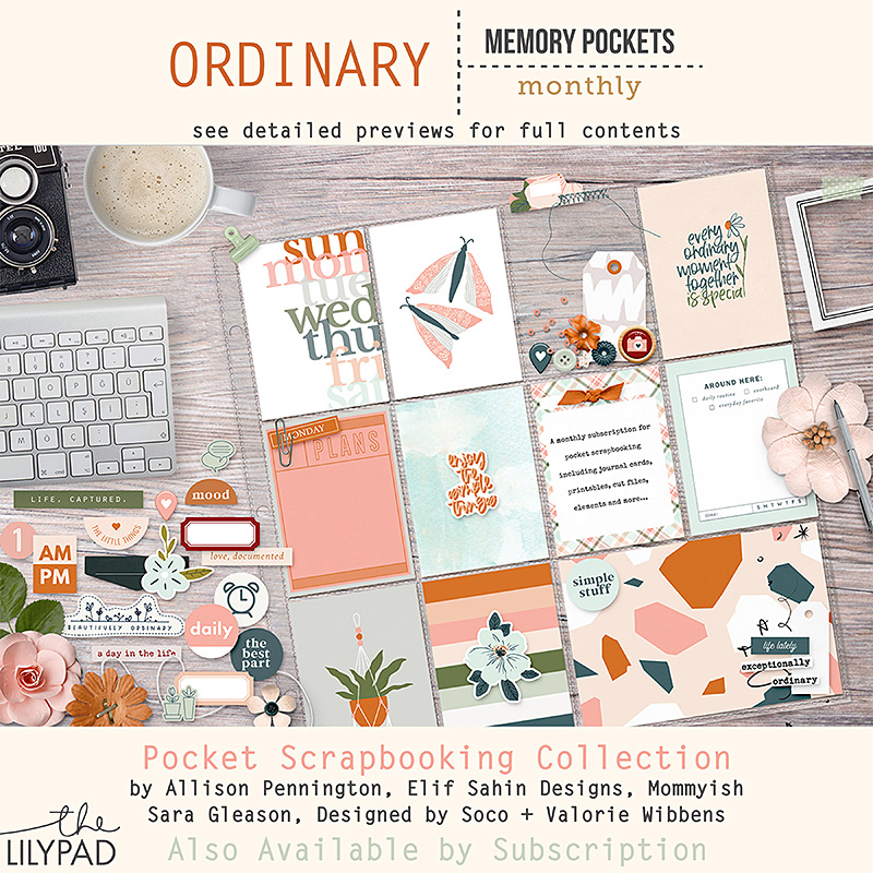 New MPM: Anything But Ordinary