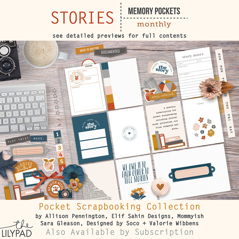 Welcome to the Newest MPM: STORIES