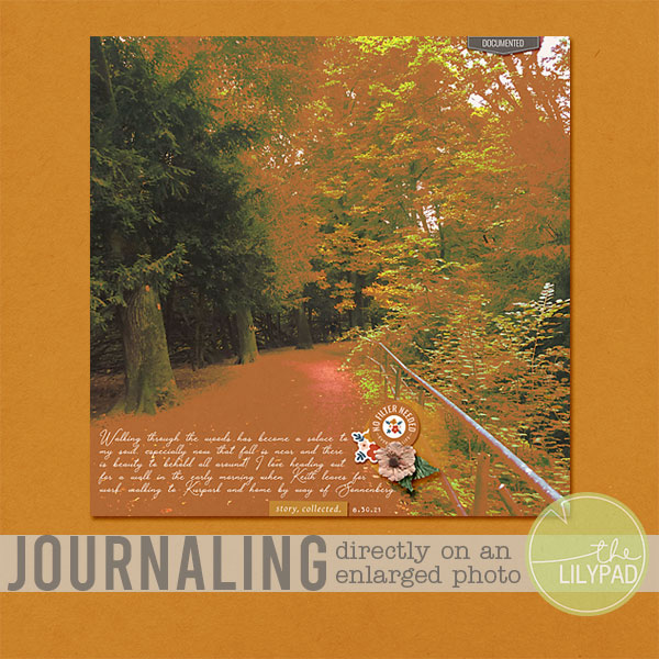 Journaling Directly on an Enlarged Photo